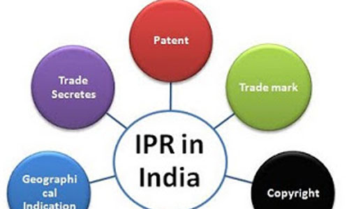 Intellectual Property Rights Matter